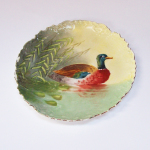 duck plate cropped
