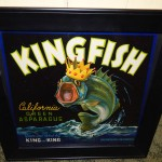 Kingfish cropped